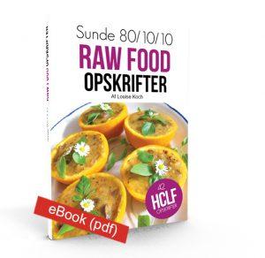 sunde-raw-food-opskrifter-ebook-no-flag
