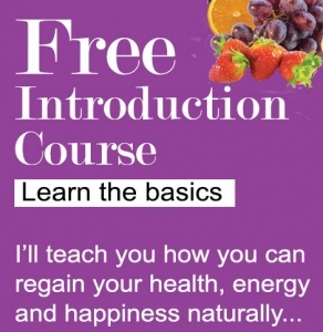 Free introduction course